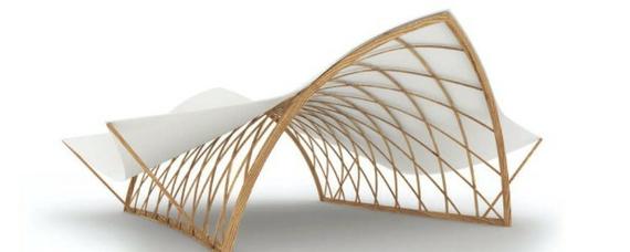 Buche und Holzfaser und viel Phantasie = Strohboid