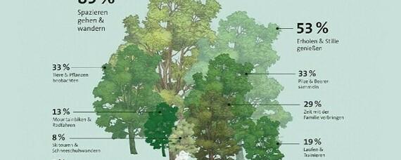 Wald hilft durch die Pandemie