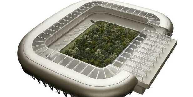 Ein Wald Im Fussballstadion